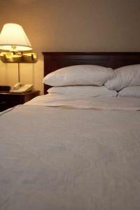 Hotel bedbugs?